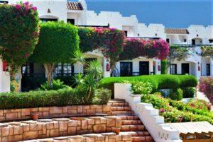 Verginia Sharm Hotel Горящие туры