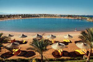 Desert Rose Египет